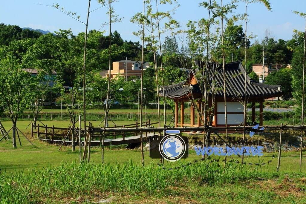 Hanok in the Bamboo Forest, Juknokwon, Damyang, South Korea