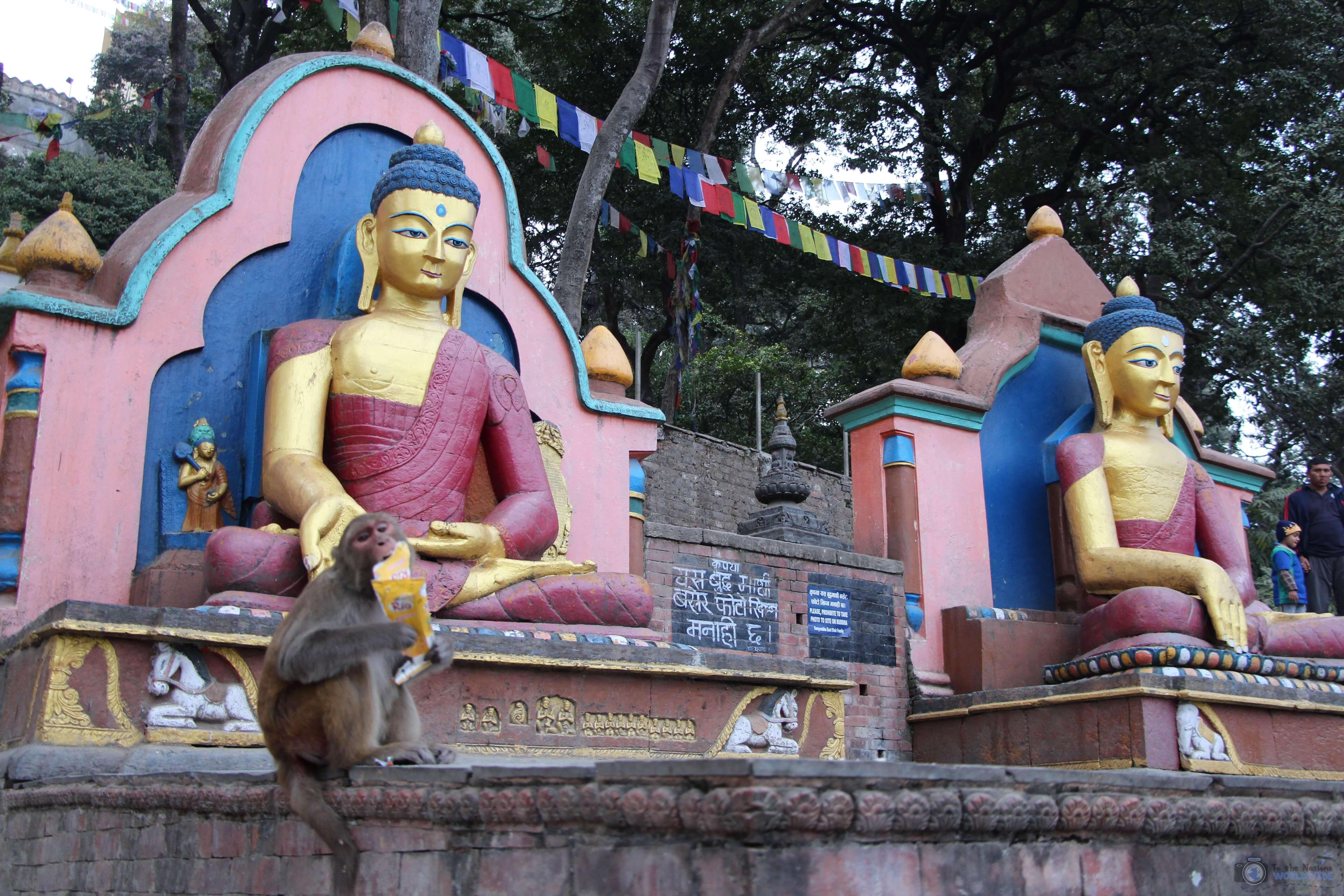 Monkeys at Swayambhunath Monkey Temple, Kathmandu, Nepal