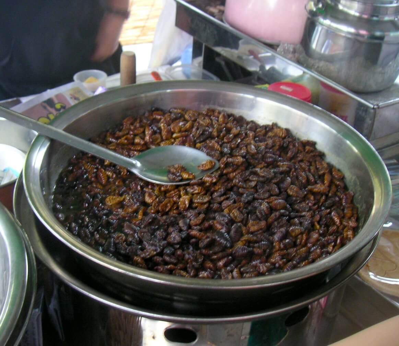 Beondegi Seoul South Korea food tour
