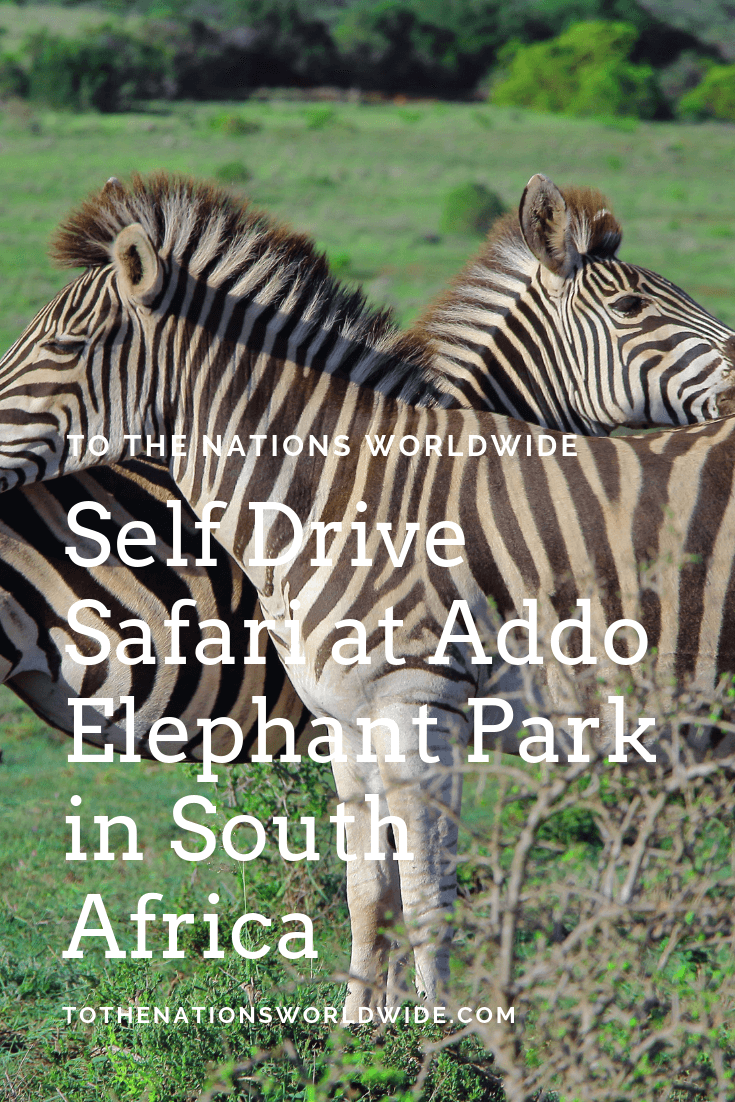 Self Drive Safari at Addo Elephant Park in South Africa